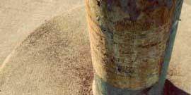 Фото - Бетонирование столбов для забора – обозначаем периметр
