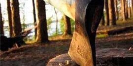 Фото - Виды топоров – на все случаи жизни!