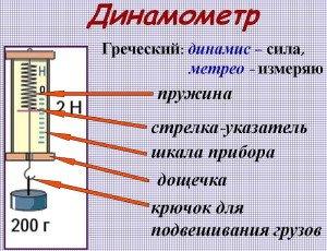 На фото - устройство и принцип работы динамометра, kanschool9.ru