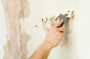 Очистить стены от обоев: выбираем способ