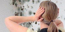 Чем обработать ванную от плесени