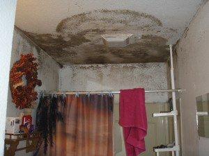 На фото - плесень в ванной комнате, tribalhealthyhomes.org