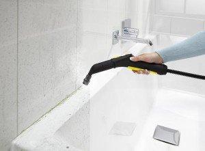 На фото - чем обработать ванную от плесени, savette.com