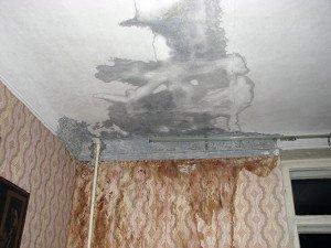 Фото материального ущерба от протечки крыши, krovlyakryshi.ru