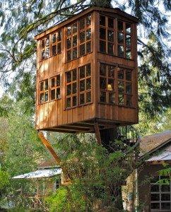 Фото беседки на дереве, ecology.md