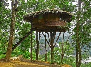 На фото - беседка на высоких столбах около дерева, liveinternet.ru