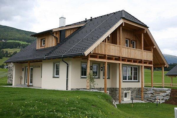 Комбинированные дома – европейская технология? фото