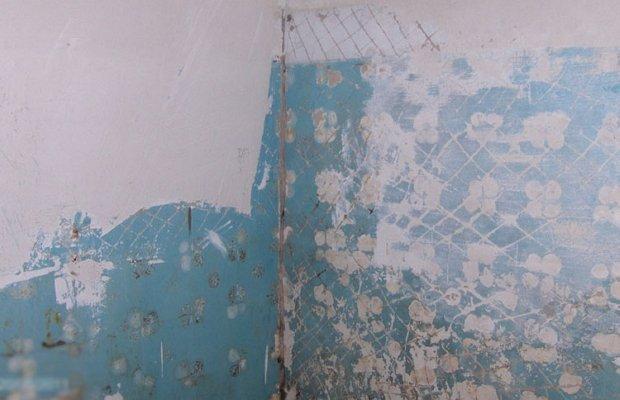 Разным стенам – разный подход! фото