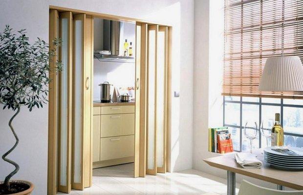 Достоинства и особенности применения дверей-гармошек