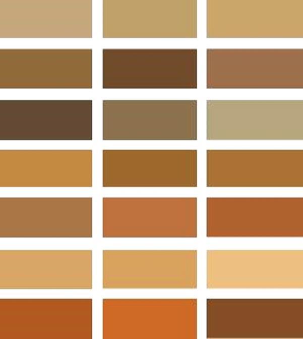 Оттенки бежевого цвета