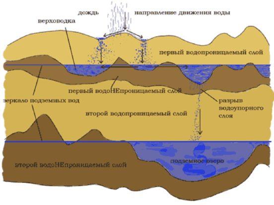 Схема проницаемой сверху почвы