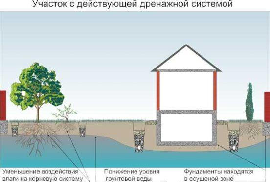 Участок и дом с действующим дренажом