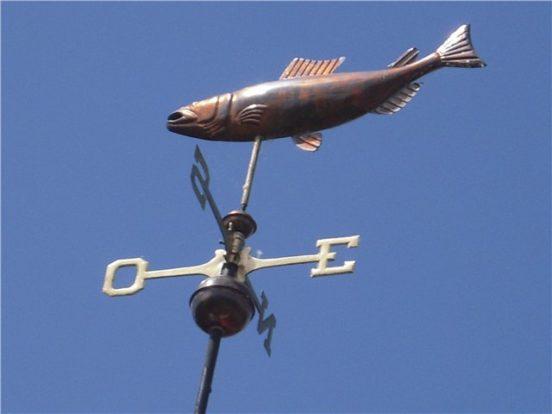 Флюгер-рыба