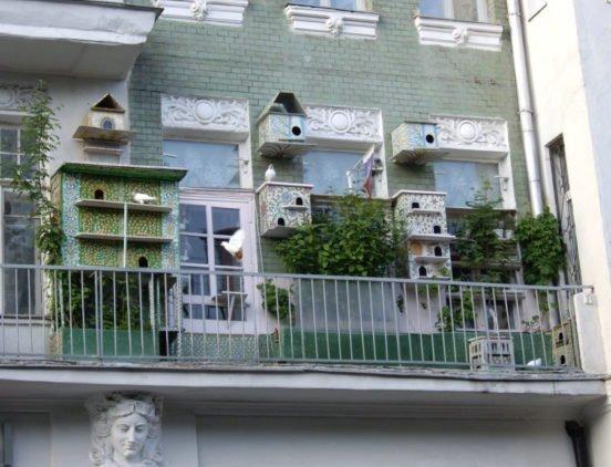 Голубятня на балконе: требования к размещению птиц в квартире фото