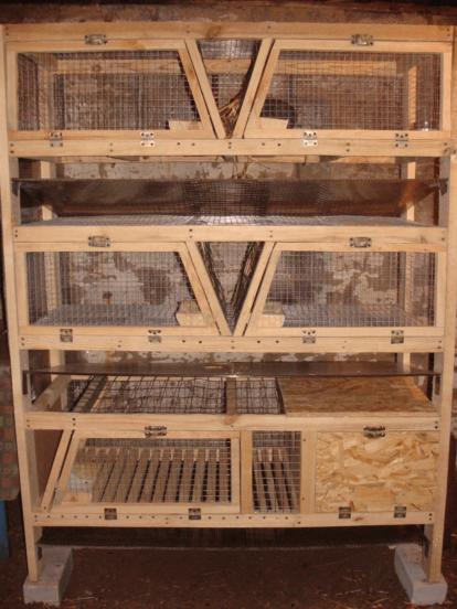 Клетки для кроликов по технологии Н.И. Золотухина