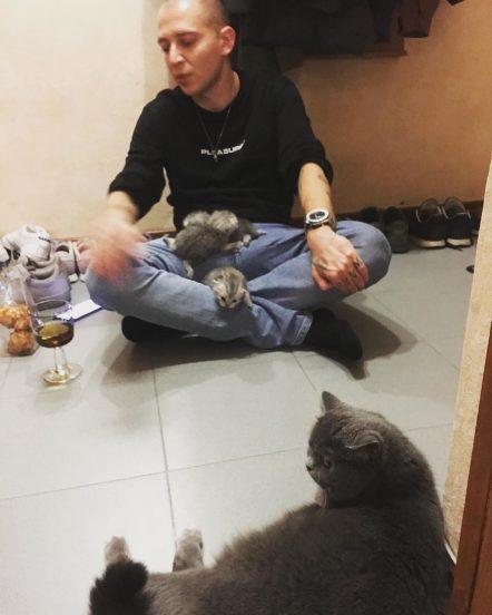 Оксимирон с котятами