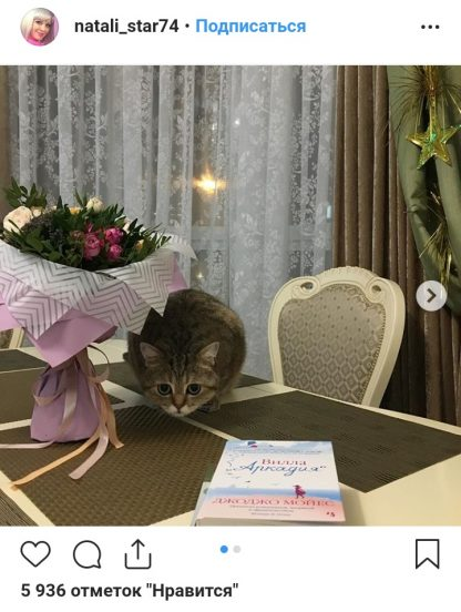 Фото кота Натали на столе из Инстаграм