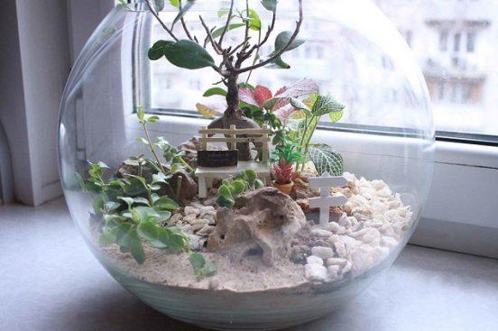 Сад в аквариуме