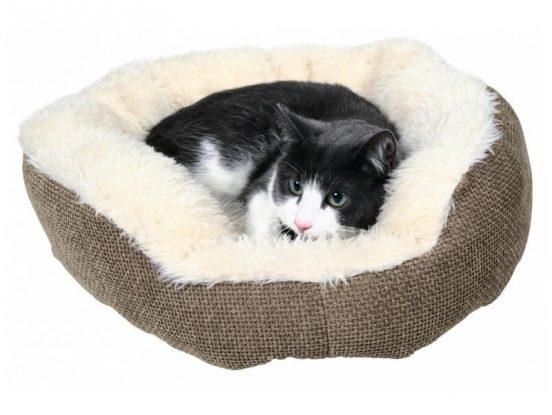Как сделать место для кошки своими руками