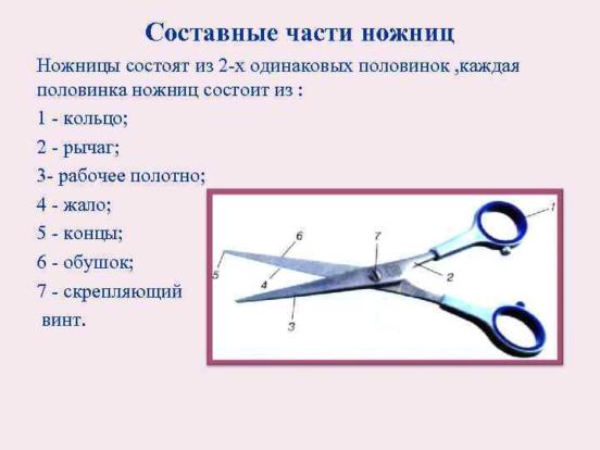 Составные части ножниц